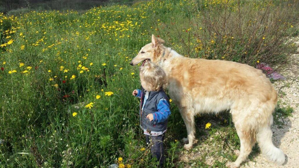 תמונתם של הכלבה מיה ובנם של בעליה