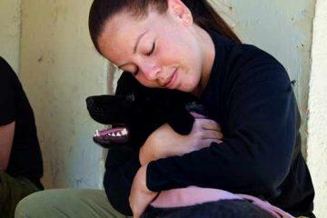 """פניה נרגשת מטעם בעלים חולת סרטן שכלבתה הינה כל עולמה לבית המשפט השלום בחיפה, השיגו ל""""דובה"""" ומשפחתה תצפית בית."""